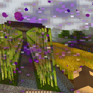 Minecraft_Nether_Portalansicht